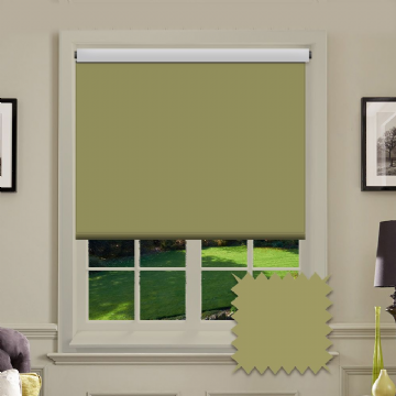 Light Green Plain Roller Blind in Carnival Willow FR / Antibacterial fabric